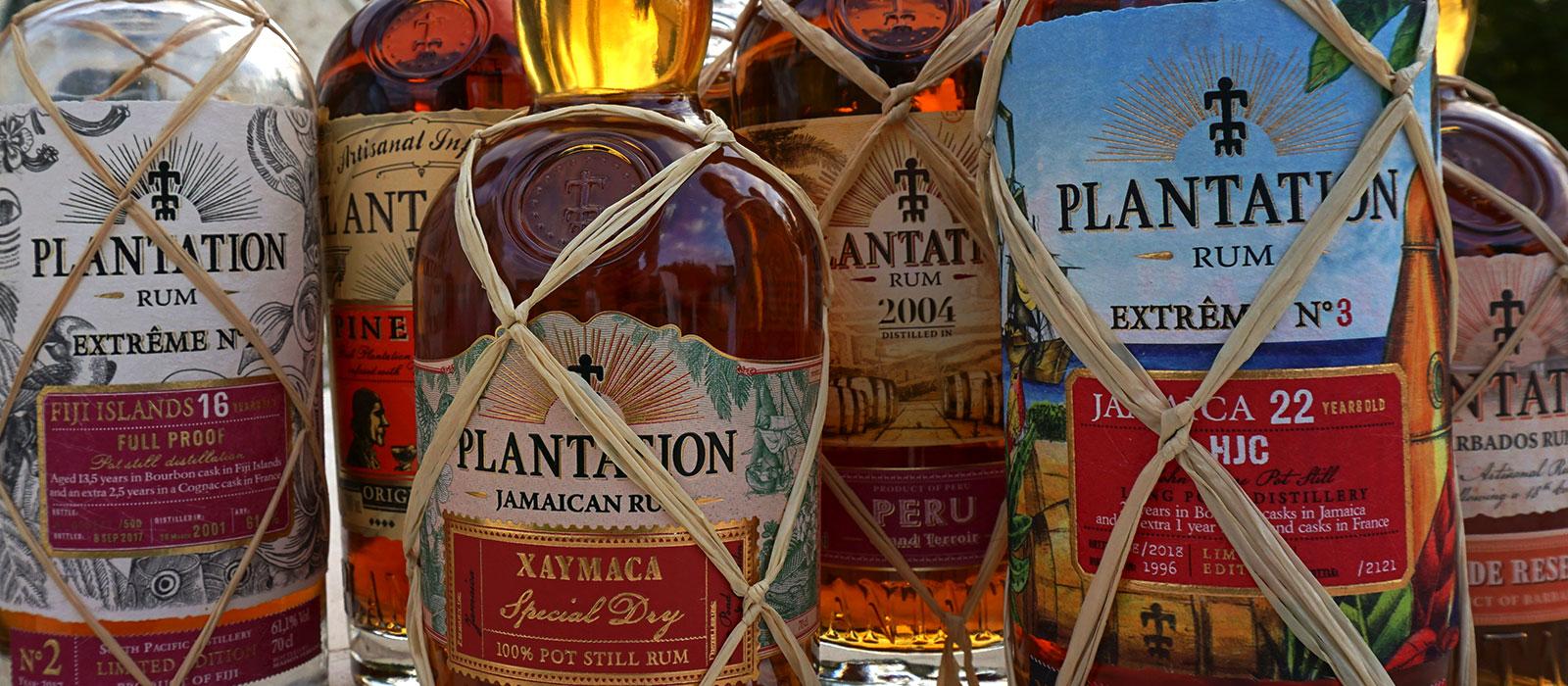 Bilder från Plantation i Cognac, 2018 – del 2
