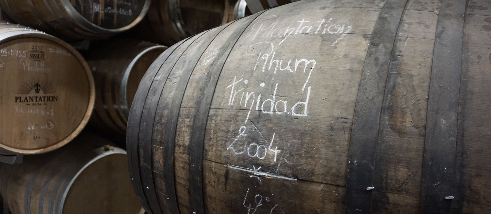 Bilder från Plantation i Cognac, 2018 – del 1